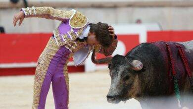 Photo of SAMEDI TOROS Juan Leal à Madrid, la rage au ventre