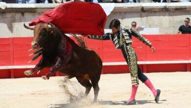 Photo of TOROS La Jouvenço : 4ème édition et que du bon !