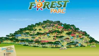 Photo of GRAND JEU DE L'ÉTÉ Accrobranche et Laser Game à « Forest Parc » !