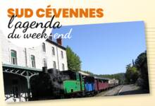 Photo of SUD-CÉVENNES Sorties et bons plans, du 15 au 17 novembre 2019