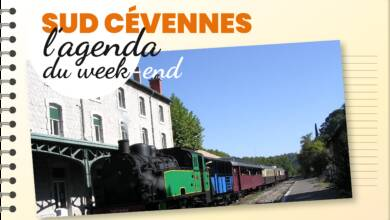 Photo of SUD-CÉVENNES Sorties et bons plans, du 8 au 10 novembre 2019