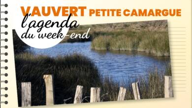Photo of PETITE CAMARGUE & VAUVERT Sorties et bons plans, du 27 au 29 septembre 2019