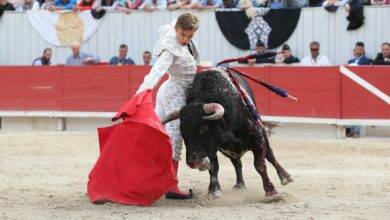 Photo of TOROS L'association des matadors de toros solidaire des éleveurs